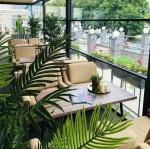 Ibiza lounge cafe Белгород
