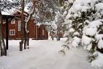 Лесной уголок база отдыха Белгород